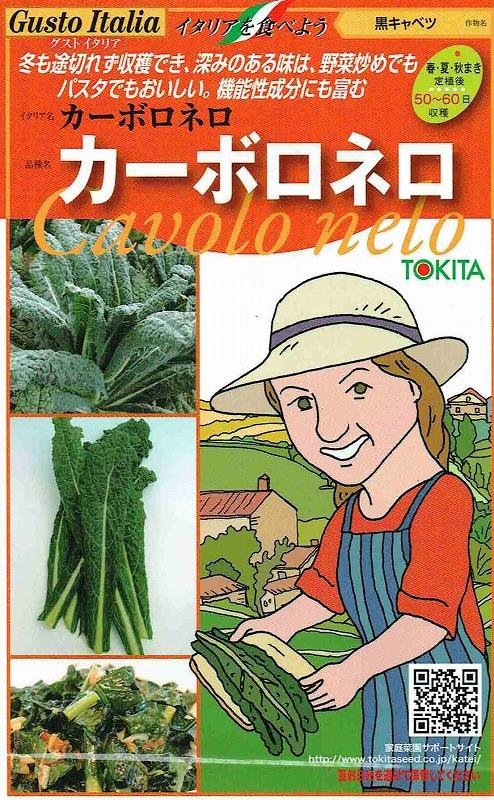 特価 種子 限定モデル トキタ種苗 グストイタリア カーボロネロ 郵送対応 黒キャベツ 約40粒