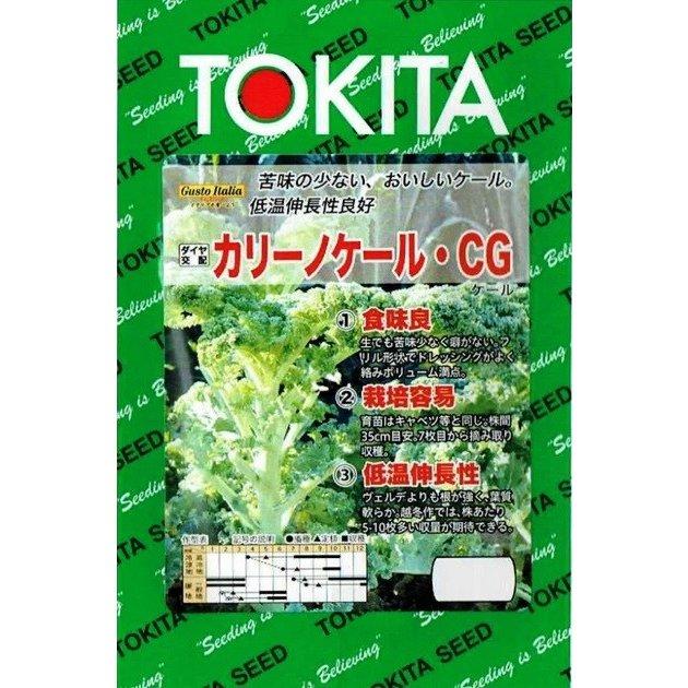 種子 日本最大級の品揃え トキタ種苗 数量は多 グストイタリア カリーノケール 郵送対応 約200粒 CG