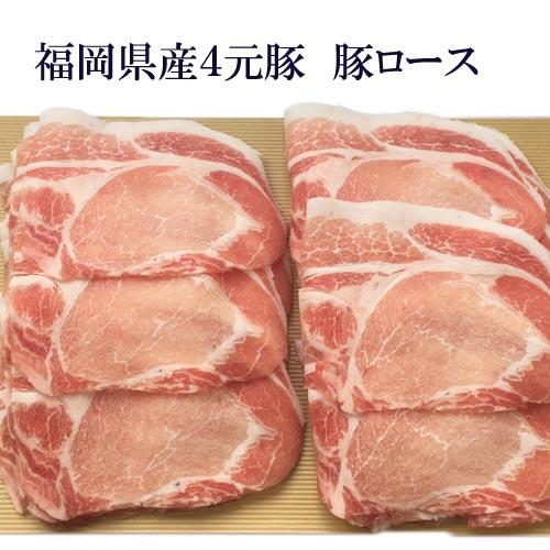 安心安全な福岡県産ハイブリッドポークを使用 超激安 豚バラより脂が少なくあっさり食べられる豚ロース100g 大人気! 豚肉 ヘルシー 国産 あす楽