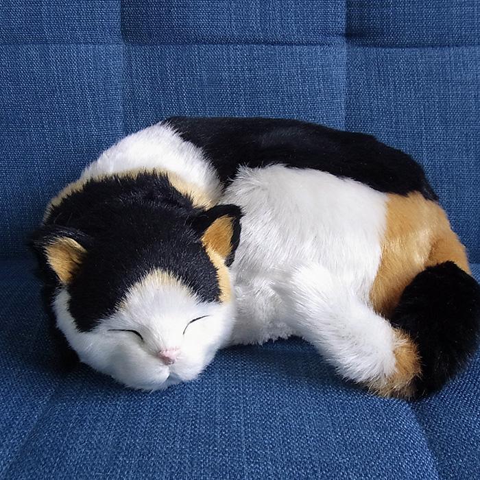 猫 ネコ ねこ ぬいぐるみ リアル 本物 定番 パーフェクトペット そっくり ペット 三毛猫 大 簡易ラッピングでお届け 美品