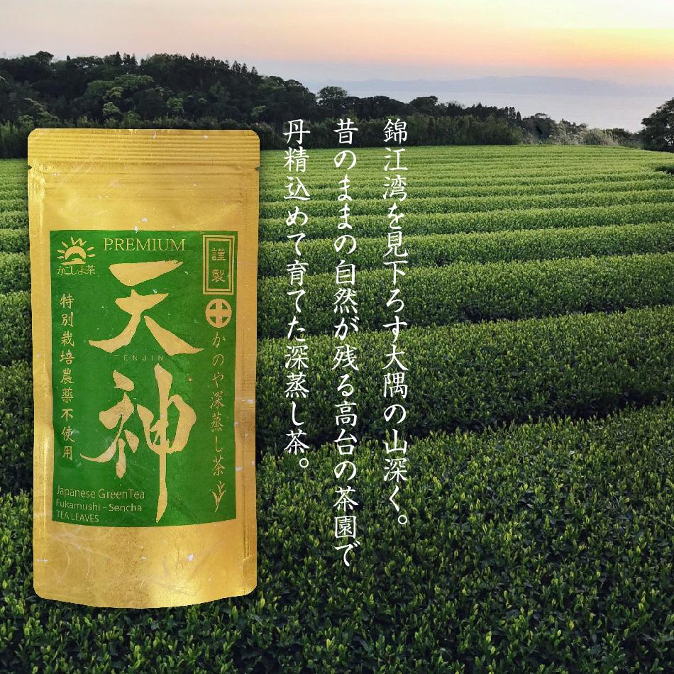 特別栽培農薬不使用 10日間被覆栽培茶 かのや深蒸し茶 セール価格 天神 てんじん 10日間被覆栽培 100g さえみどり 与え 大井早生ブレンド 農薬不使用