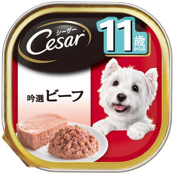 (まとめ)シーザー 11歳からの 吟選ビーフ 100g【×96セット】【ペット用品・犬用フード】