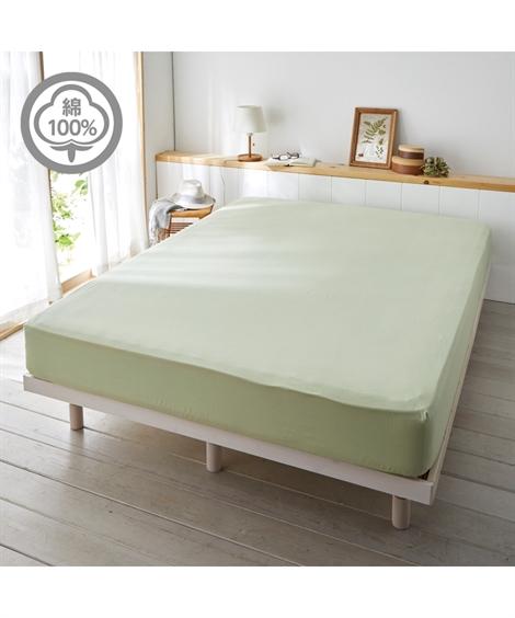 シングル  シーツ 綿100% ベッド マットレス用 布団 カバー グリーン/グレージュ シングル ニッセン nissen