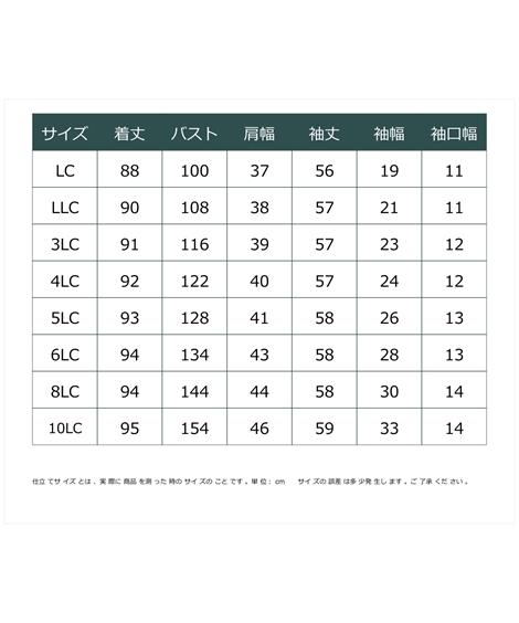 チュニック 大きいサイズ レディース チュール レース切替 カットソーアイボリー系 ネイビー系 4LC 5LC 6LC ニッセンvNwn0Oym8