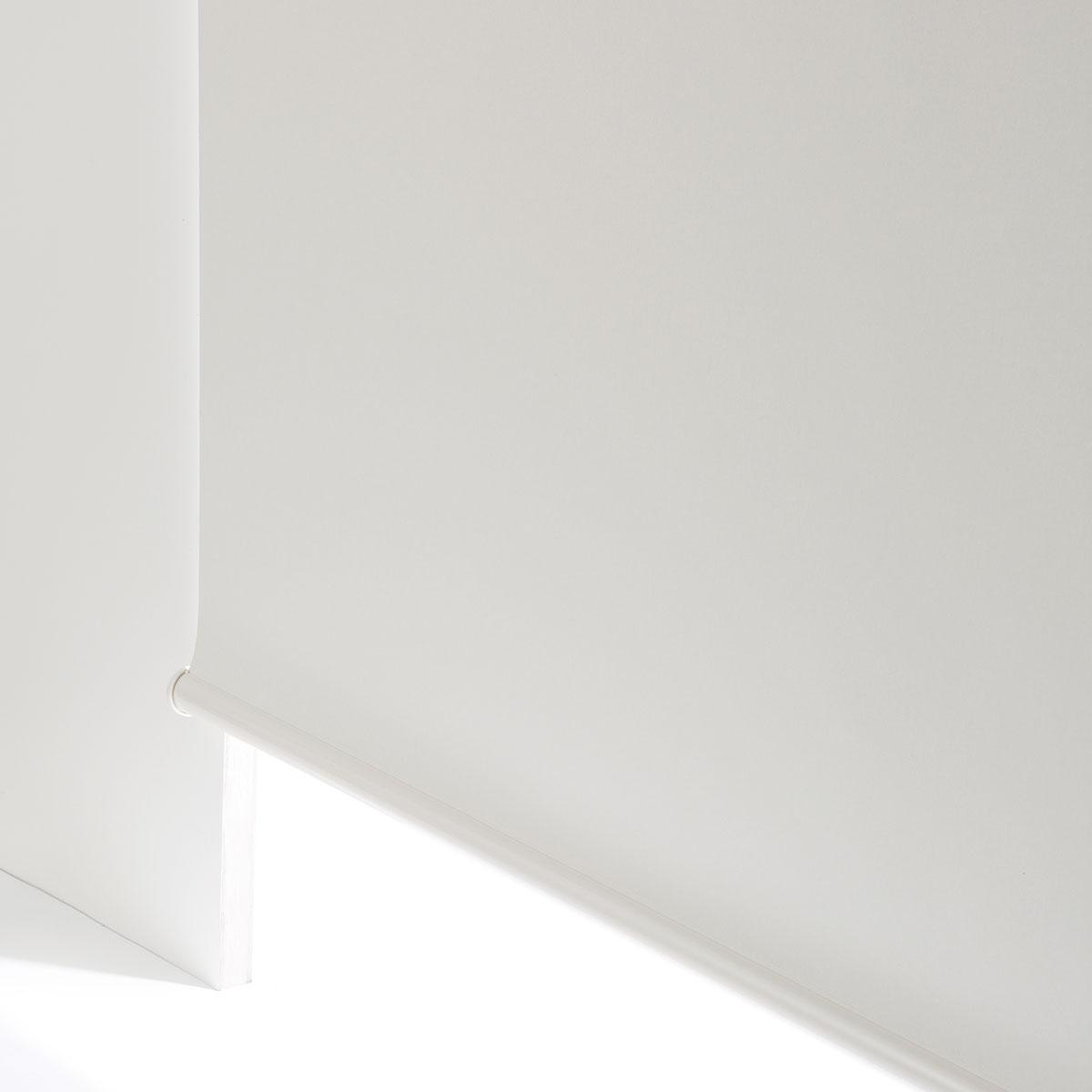 間仕切り 窓 目隠し ホームファッション 遮光ロールスクリーン チェーン式 ニトリ 品質検査済 ドルフィンWH 80X220 〔合計金額11000円以上送料無料対象商品〕 玄関先迄納品 1年保証 ギフ_包装