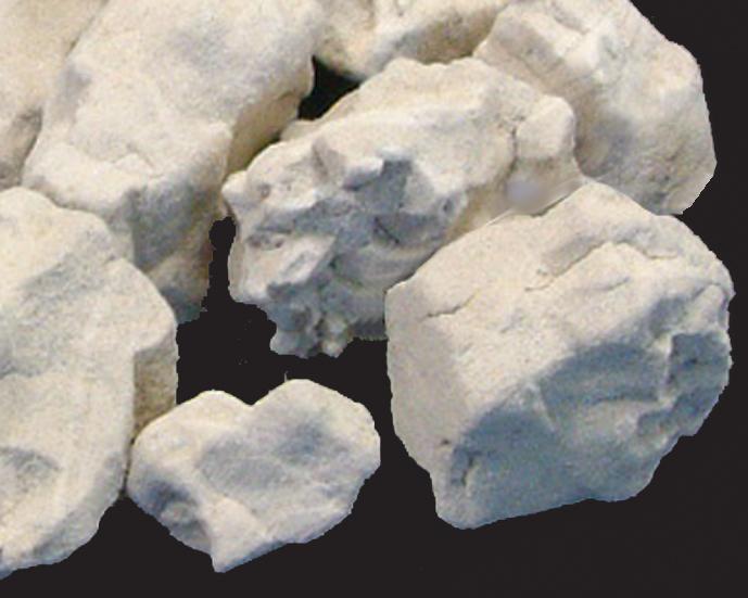 本蕨 誕生日 お祝い わらび粉 100g 国内産原料100%使用 蕨粉 蕨餅 わらび餅 新作販売 わらびもち