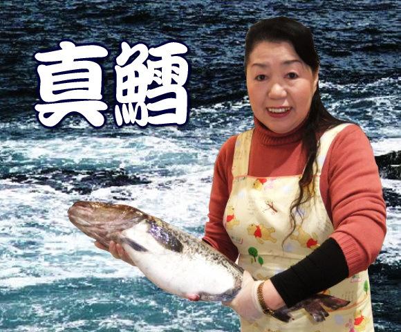 豊漁のお陰で最安値に挑戦中!天然真鱈(たら・タラ)1本(3kg前後)
