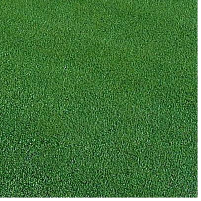 西洋芝の種ペンクロス720g 18坪(60平方メートル)分