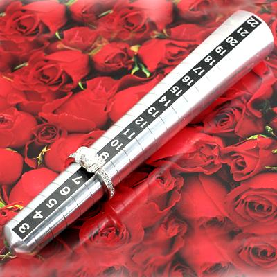 送料無料 プロ仕様 リングサイズ棒 ポケットサイズ 10%OFF 6号~20号用 クーポン5%OFF 自分にご褒美 奥様の指輪サイズをこっそり測って 記念日 誕生日 サプライズで