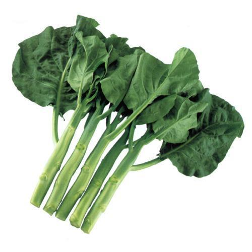 【 宝みどり 】 種子 2dl ( 種 野菜 野菜種子 野菜種 )