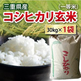 【送料無料】【 令和元年 】三重県産 コシヒカリ 玄米 一等米 30kg コシヒカリ お米 コメ