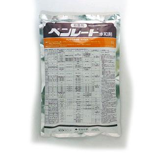 低価格 幅広い適用をもった殺菌剤 殺菌剤 大人気 500g ベンレート水和剤