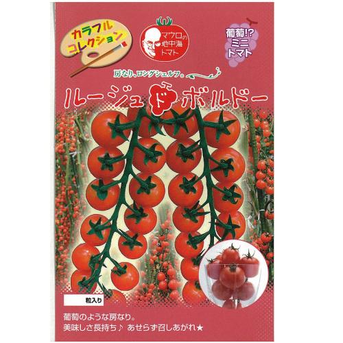 ミニトマト 種 【ルージュドボルドー】 1,000粒 ( 種 野菜 野菜種子 野菜種 )