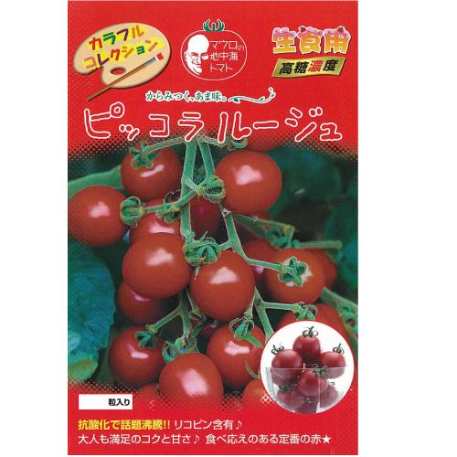 トマト 種 【ピッコラルージュ】 1,000粒 ( 種 野菜 野菜種子 野菜種 )