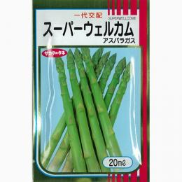 アスパラガス 種 【 スーパーウェルカム 】 種子 22ml ( 種 野菜 野菜種子 野菜種 )