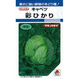 キャベツ 種 【 彩ひかり 】 種子 L5千粒 ( 種 野菜 野菜種子 野菜種 )