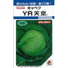 キャベツ 種 【 YR天空 】 種子 L5千粒 ( 種 野菜 野菜種子 野菜種 )