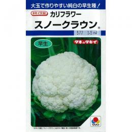 カリフラワー 種 【 スノークラウン 】 種子 L5千粒 ( 種 野菜 野菜種子 野菜種 )