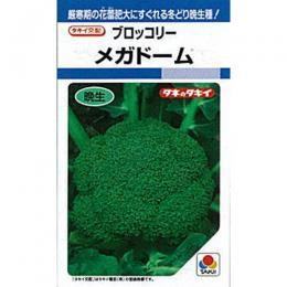 ブロッコリー 種 【 メガドーム 】 種子 L5千粒 ( 種 野菜 野菜種子 野菜種 )