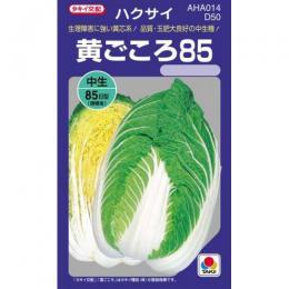 白菜 種 【 黄ごころ85 】 種子 1dl ( 種 野菜 野菜種子 野菜種 )