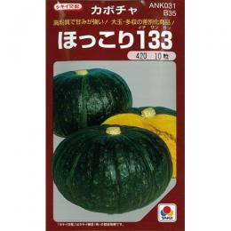 かぼちゃ 種 【ほっこり133】 500粒 ( 種 野菜 野菜種子 野菜種 )