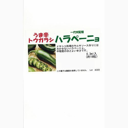 唐辛子 種 【ハラペーニョ】 1,000粒 ( 種 野菜 野菜種子 野菜種 )
