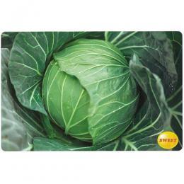 キャベツ 種 【 とくみつ 】 種子 コート5千粒 ( 種 野菜 野菜種子 野菜種 )