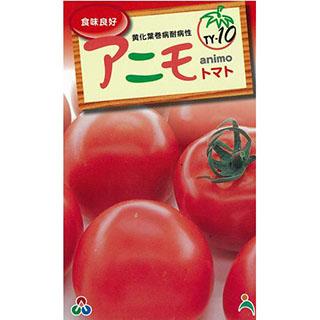 大玉トマト 種 【F1アニモ】 1,000粒 ( 種 野菜 野菜種子 野菜種 )