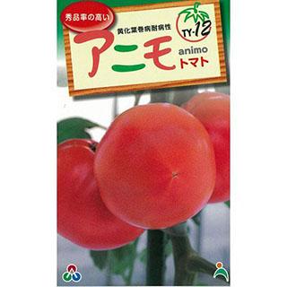 大玉トマトの種 大玉トマト 予約販売 種 時間指定不可 F1アニモ 100粒 野菜 野菜種 野菜種子
