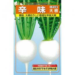 大根 種 【 辛味 】 種子 1dl缶 ( 種 野菜 野菜種子 野菜種 )