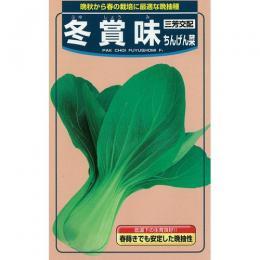 ちんげん菜 種 【 冬賞味 】 種子 2dl ( 種 野菜 野菜種子 野菜種 )