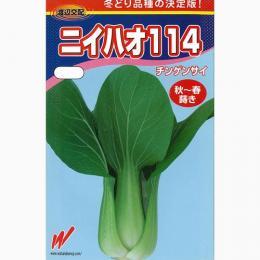 ちんげん菜 種 【 ニイハオ114 】 種子 2dl ( 種 野菜 野菜種子 野菜種 )