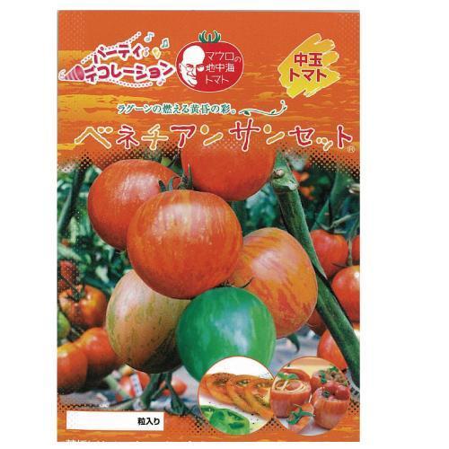 トマト 種 【ベネチアンサンセット】 1,000粒 ( 種 野菜 野菜種子 野菜種 )