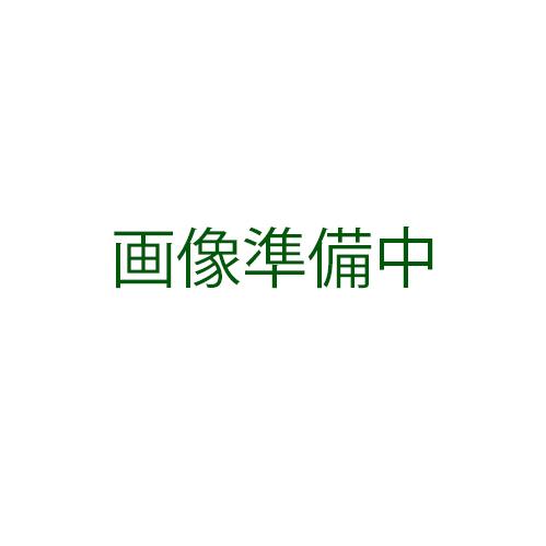 ゴーヤ 種 【ミニニガウリ】 1L ( 種 野菜 野菜種子 野菜種 )