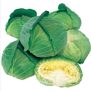 玉太りがよく 正規品スーパーSALE×店内全品キャンペーン 在圃性も優れる キャベツ 種 彩風 小袋 野菜 全国どこでも送料無料 野菜種子 2000粒 野菜種