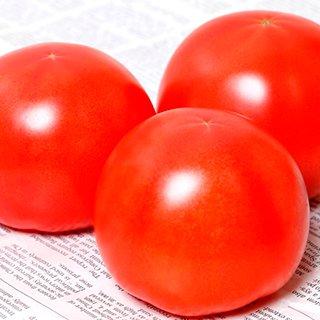 トマト 種 【 麗旬 】 1000粒 ( トマトの種 )