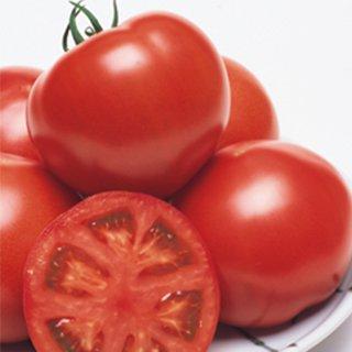 トマト 種 【 CF桃太郎ヨーク 】 ペレット1000粒 ( トマトの種 )
