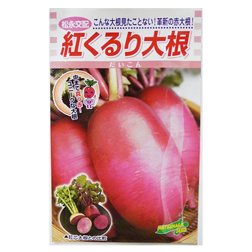 内部まで赤くなる珍しいダイコン 百貨店 大根 種 紅くるり 野菜種 野菜種子 野菜 新生活 20ml