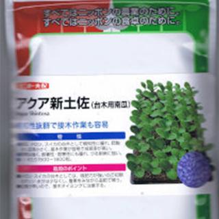 カボチャ台木 種 【 アクア新土佐 】 1L ( カボチャ台木の種 )