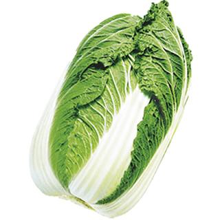 白菜 種 【 黄波90 】 種子 20ml ( 種 野菜 野菜種子 野菜種 )