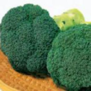 ブロッコリー 種 【 緑帝 】 ペレット5千粒 ( ブロッコリーの種 )