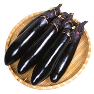 ナス 種 【 黒の匠 】 2000粒 ( ナスの種 )