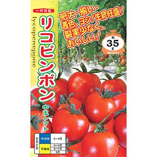 トマト 種 【 リコピンポン 】 500粒 ( トマトの種 )