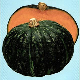 かぼちゃ 種 【恋するマロン】 1,000粒 ( 種 野菜 野菜種子 野菜種 )