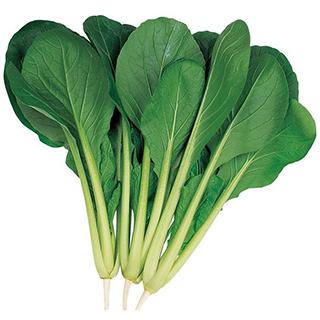 ガーデニング 家庭菜園 種 豪華な 苗 苗木 園芸用品 農業用 資材 菜園くらぶ 野菜種子 はっけい 野菜 期間限定お試し価格 2dl 小松菜 野菜種
