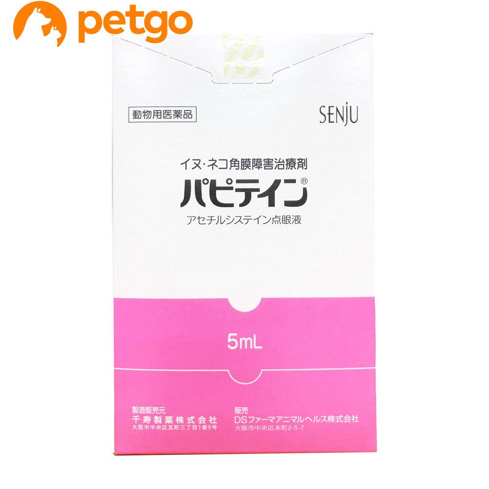 パピテイン 犬猫用 5mL(動物用医薬品)【あす楽】
