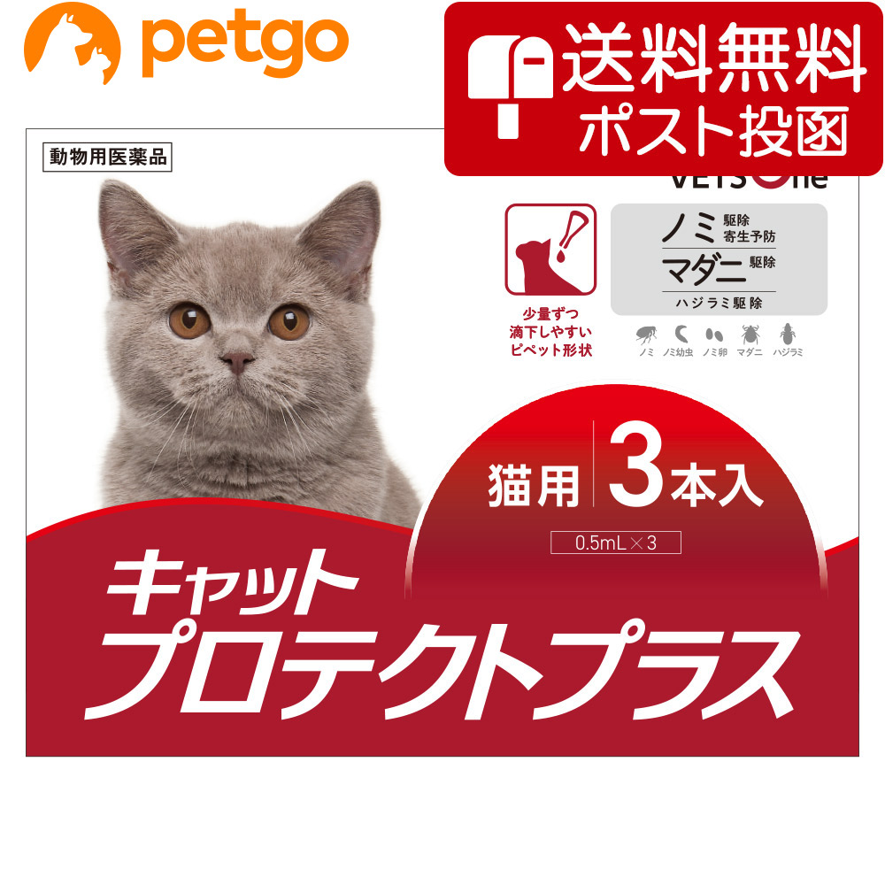 フロントラインプラスのジェネリック医薬品です ネコポス 同梱不可 ベッツワン キャットプロテクトプラス 再入荷 予約販売 猫用 あす楽 動物用医薬品 3本 日本