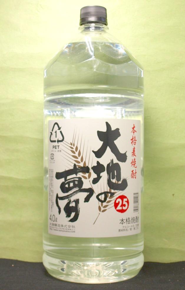 お中元 ギフト プレゼント 焼酎 25° 大地の夢 4L 2本 愛知県 内藤醸造 送料無料