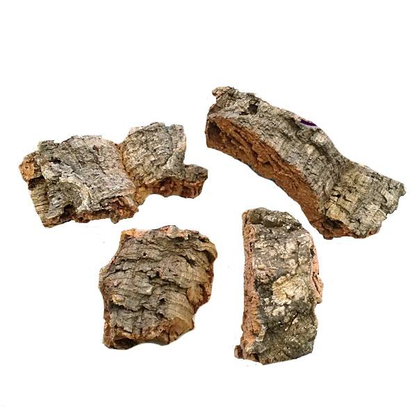 ヘゴ板 代替 着生 植物 引出物 チランジア エアープランツ コウモリラン 形 コルク小片 サイズのバラつきあります Sサイズ 3個セット 全長10~15cm位 中古