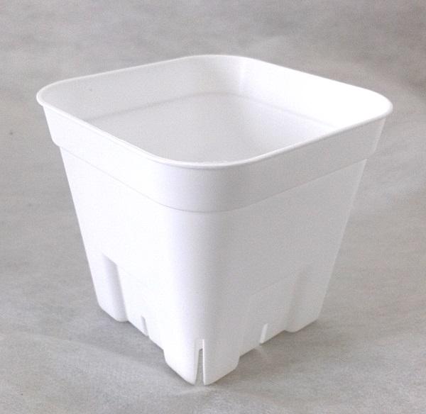 プレステラ 鉢 90型 (9cm) ホワイト 白 1200個 ケース販売 (他商品との同梱不可)